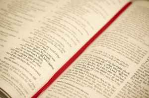bible blur book catholic